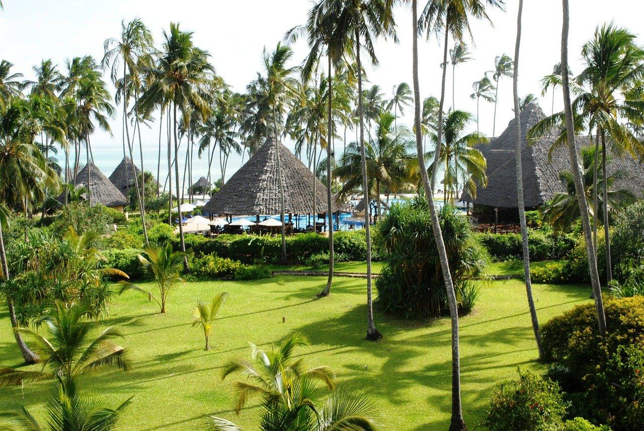 tropical, zanzibar, ocean paradise