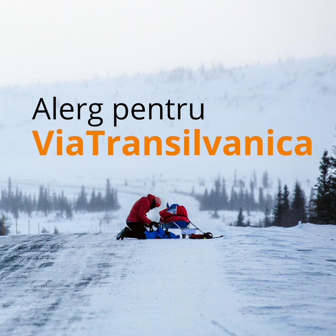 Tasuleasa Social Via Transilvanica Scoala de Mers pe Munte Yukon Arctic Ultra