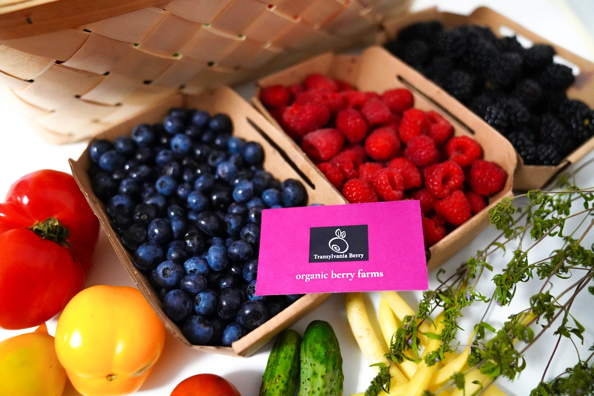 Fructe de padure bio aromate afine zmeura mure legume bio